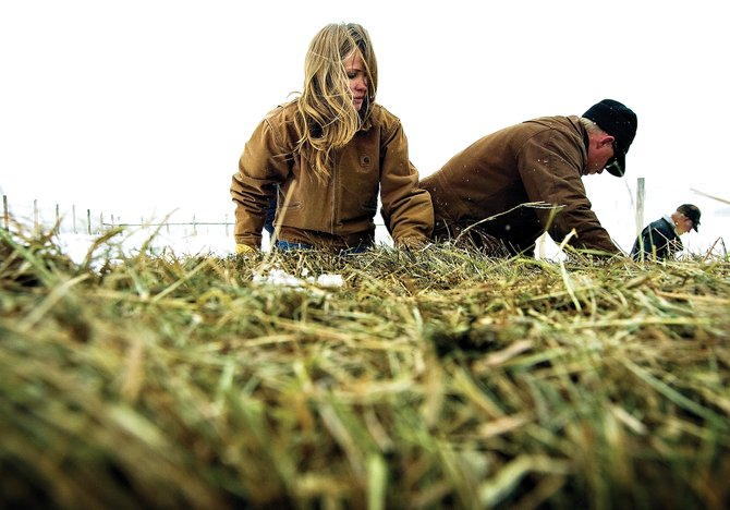 Christy Belton, left, and her husband Matt stack bales of hay on a horse-drawn sleigh for the morning feeding of the cattle on the Warren Ranch outside of Steamboat Springs.