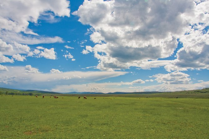 The 373-acre meadow on Sweetwood Ranch is under a conservation easement held by the Colorado Cattlemens Agricultural Land Trust.