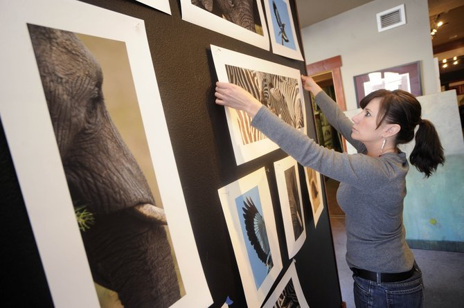 Steamboat Springs photographer Kim Keith hangs a print Tuesday at RED Contemporary that she took during a November trip to Africa. Keith will join artists Gregory Block and Stan Madeja for an opening reception from 5 to 8 p.m. today at the gallery in Sheraton Steamboat Resort.