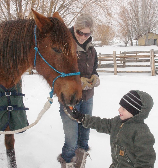 Graham Kindred, 4, feeds a carrot to a rescued horse at Sidney Peak Ranch on Feb. 17 while barn manager Rachel Ratkovich watches. It was the first carrot that Carlito took from a person since he was rescued nearly five weeks ago.