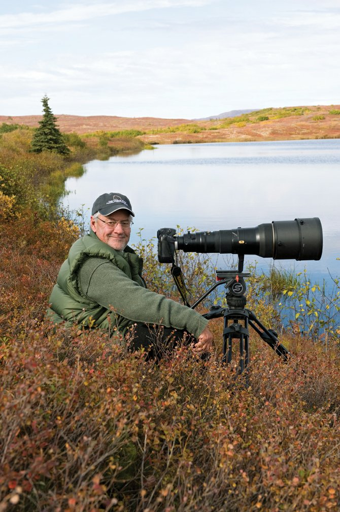 Nature photographer Tom Mangelsen on the job in Denali National Park, Alaska. Mangelsen will appear at a reception from 5 to 9 p.m. Saturday at his Steamboat Springs gallery, Images of Nature.