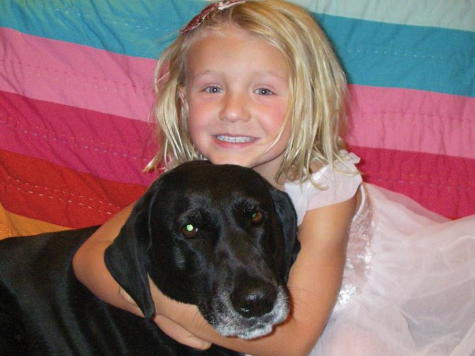 Duke, a 10-year-old Labrador retriever owned by the Arnone family of Steamboat Springs, was shot and killed near his west Steamboat neighborhood on Saturday. Police are investigating.