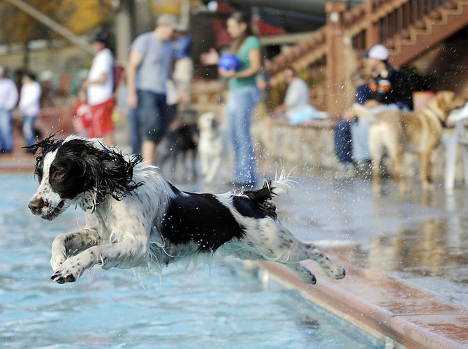 Zelda leaps for a tennis ball thrown by Marie Lacey during the 2009 Poochy Paddle at Old Town Hot Springs. This year's event is from 2 to 4 p.m. Sunday.