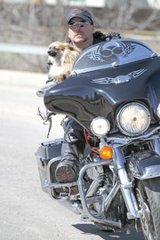 Murray Fenstermacher, 49, rides his 2008 Harley Davidson through Craig with Alvin, his nine-and-a-half pound Pomeranian. Fenstermacher designed a harness system for Alvin to keep him safe while riding on his motorcycle and is considering patenting and marketing the idea.