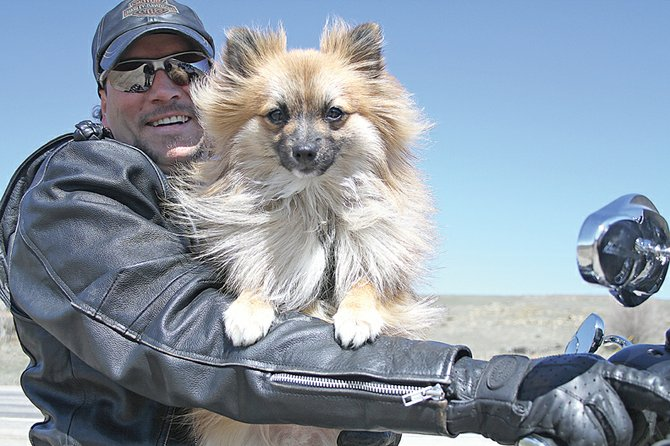 Murray Fenstermacher and his Pomeranian, Alvin, have become inseparable after Fenstermacher picked him out of a litter of puppies. Fenstermacher said Alvin, who has taken a liking to riding on his motorcycle, has developed into a celebrity, of sorts, around Craig.