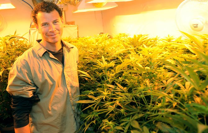Skyler Hartman stands among a sea of marijuana plants. Hartman, who owns the commercial grow operation Elevation Wellness Center in downtown Oak Creek, said as far as he is aware, many residents are not concerned with his operation.
