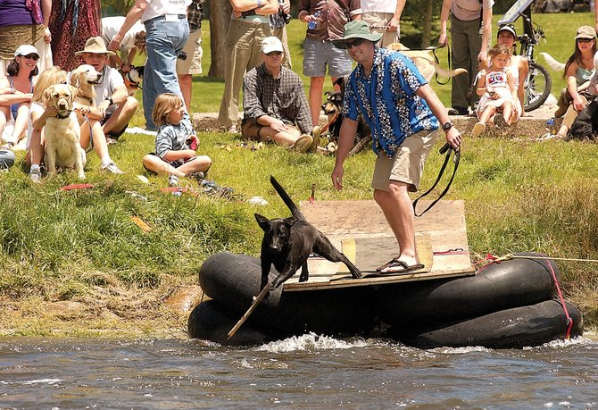 The Crazy River Dog Contest, one of the most popular events at the annual Yampa River Festival, begins at 3:30 p.m. Saturday at the D-Hole near the Depot Art Center on 13th Street in downtown Steamboat Springs.