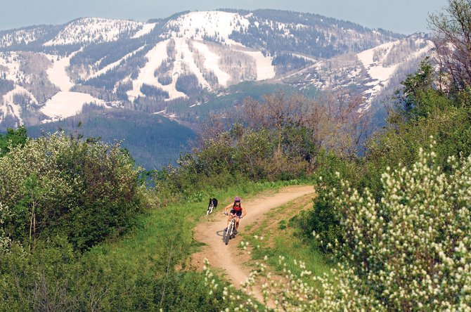 Christine Pietras rides Howelsen Hill with her dog, Pancho, on Tuesday. Steamboat Springs Town Challenge Mountain Bike Race series organizers had to cobble together a blend of trails dry enough for today's race.