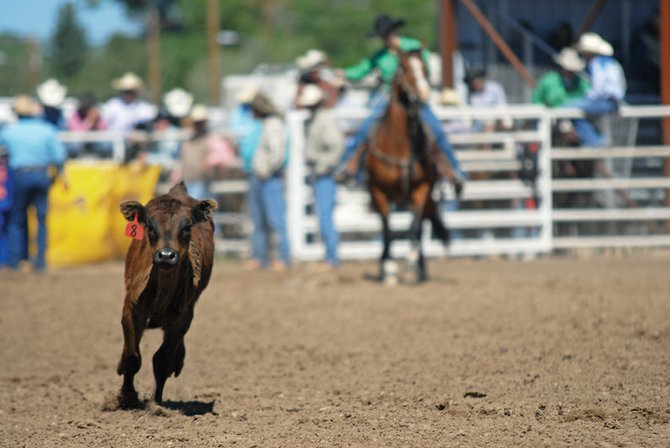 A calf breaks free during the breakaway roping event at last year's Colorado State High School Rodeo at the Moffat County Fairgrounds. The fairgrounds will host the state rodeo again from June 15 to 19.