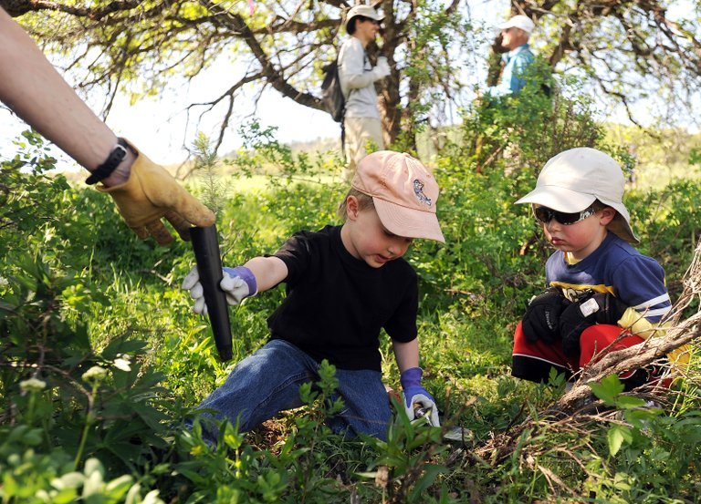 Sal Malone, 5, takes a tree to plant with Fletcher Hand, 4, in Steamboat Springs at the ReTree Steamboat event on Howelsen Hill.
