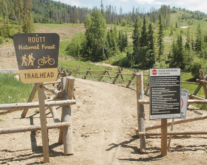 The Why Not ski trail is the designated hiking route to the top of the gondola this summer while repairs to the Thunderhead Trail are pending after a spring mud slide.