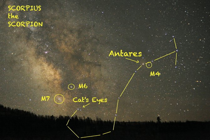 You'll need an unobstructed view of the southern horizon to see all of the Scorpion's fishhook-shaped tail, punctuated by a pair of stars nicknamed the Cat's Eyes. Check out with your binoculars red supergiant star Antares and several star clusters.