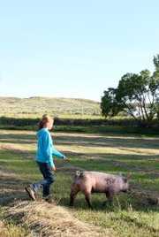 Emma Balstad walks her pig, named Pig, through a field near her home in Maybell on July 20. Emma said though 4-H and preparing for the Moffat County Fair is hard work, she enjoys it and thinks it helps her learn valuable skills.