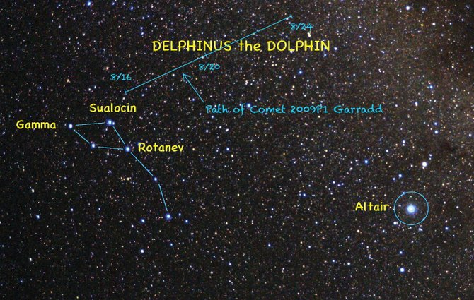 Look for the distinctive outline of Delphinus the Dolphin about halfway up in the southeastern sky at about 10 pm.  This week, you can watch with binoculars as Comet Garradd glides above the stars of the Dolphin's back.