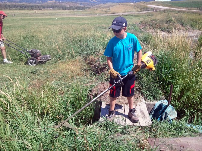 Charlie Smith clears weeds on the Stanko Ranch on Sunday as part of a Boy Scout Troop 194 community service project. Smith and other scouts spent the day helping prepare the Steamboat Stock Dog Challenge arena.
