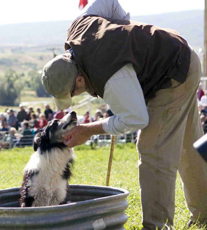 Bill Berhow, of Zamora, Calif., helps his border collie, Pete, cool off during competition at the 2009 Meeker Classic Sheepdog Trials. Berhow and Pete placed ninth in both the 2009 and 2010 competitions, and Mike, another of Berhow's dogs placed third in 2009. Berhow has competed in the Meeker Classic since 1987, and has placed first three times. He will be competing in this year's contest, as well, which begins Wednesday.