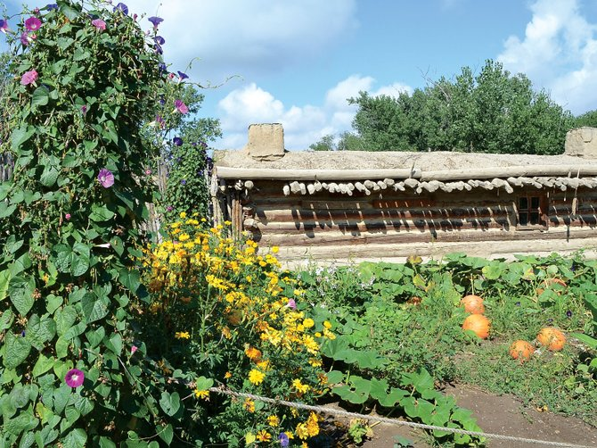 The gardens at Fort Uncompahgre in Delta are planted with medicinal herbs the native Utes and early fur trappers likely relied upon.