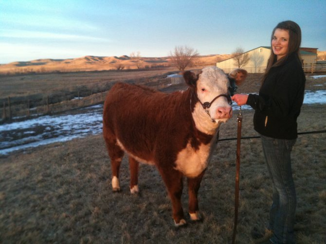 Mackenzie Camblin, 15, of Maybell, is pictured above with her registered Hereford, Polly, which she won at the National Western Stock Show.