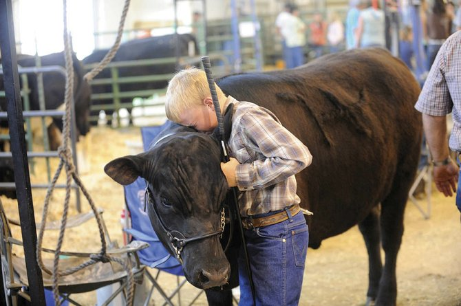 Tyler Boyer, 11, of Hayden, says goodbye to his steer Leonard after it was sold during Saturday's Junior Livestock Sale at the Routt County Fairgrounds. Steamboat Pilot & Today reporter and photographer Matt Stensland won Best in Show for this photo during the Colorado Press Association's annual Better Newspaper Awards banquet in downtown Denver.