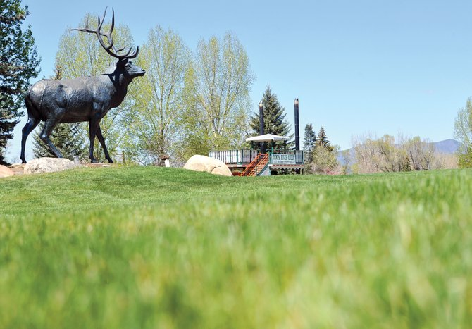 The green grass of West Lincoln Park is an inviting sight for locals and tourists in the summer. The city is looking at the possibility of switching from treated water to raw water for irrigation at the park in an effort to conserve resources.