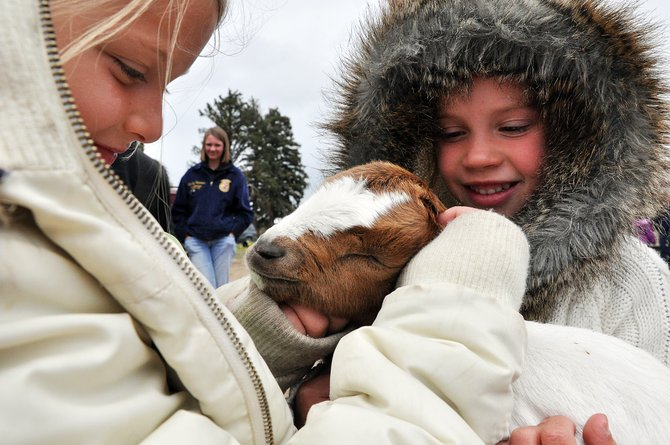 South Routt Elementary School students Ava Grasty, left, and Rose Karow pet a baby goat Wednesday during FFA Day. Soroco High School National FFA Organization members visited the school and taught the students about agriculture.
