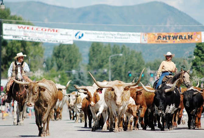Traffic in downtown Steamboat Springs was ground to a halt July 6, 2009, as the Saddleback Ranch Cattle Drive sent a herd of longhorns from the west end of downtown to the rodeo arena near Howelsen Hill. Organizers of the popular downtown cattle drive during the Fourth of July holiday have raised the $1,500 needed to bring the event back this summer.
