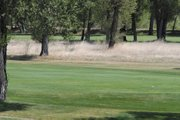 Tall grass alongside the seventh hole at Yampa Valley Golf Course show how dry the weather has been this golf season. Grounds crews have watered the course more than in any recent years to keep it in good condition.