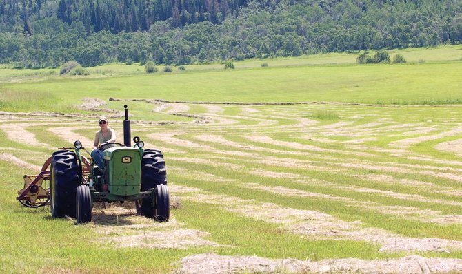 Local rancher Dorothy Harmant rakes freshly cut hay into rows in 2009 at Storm Mountain Ranch. The Routt County Board of Commissioners on Monday denied a tax appeal by homeowners in the luxury subdivision who want a favorable agricultural tax status restored to their property.