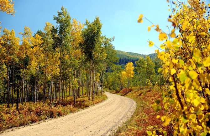 It's a heck of a time for a drive up Buffalo Pass. The road can be rough, and it's closed on weekdays, but there are few better places in Routt County to really enjoy the changing of the leaves.
