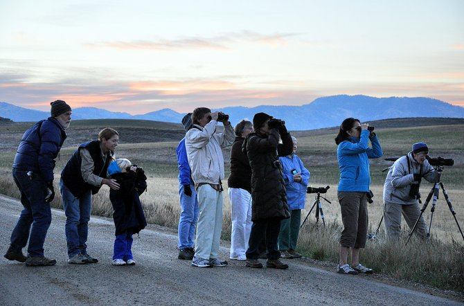 Birders scan for sandhill cranes Sunday when the sun was coming up west of Steamboat Springs. The bird watching event kicked off the inaugural Yampa Valley Crane Festival.