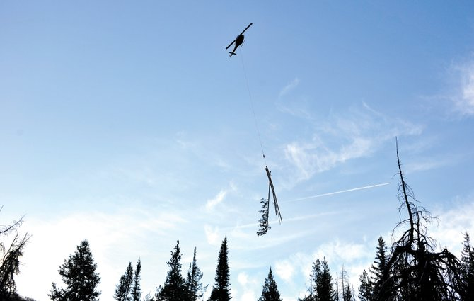 A helicopter removes beetle-killed trees from the slopes of Steamboat Ski Area on Thursday morning.