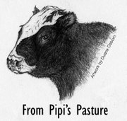 From Pipi&#39;s Pasture