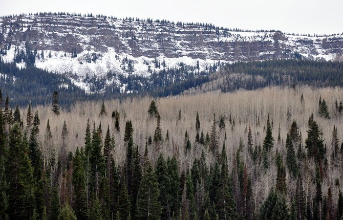 A dusting of snow covers the Flat Tops on Friday afternoon. Chances of snow and rain are in the Yampa Valley's forecast this week.