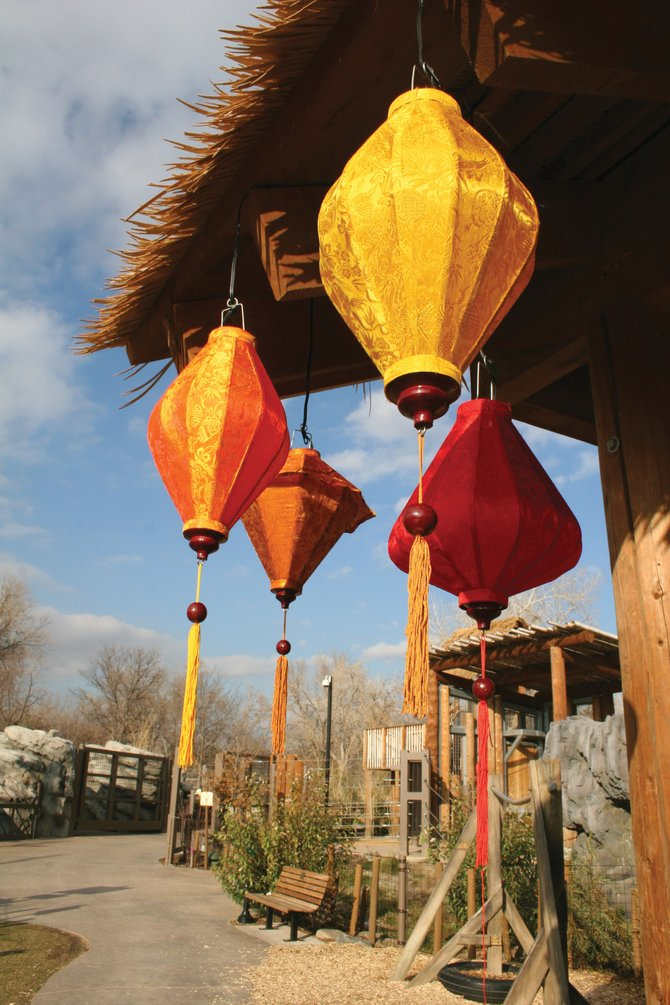 These silk lanterns are just a few of more than 200 that will be lit for the annual Zoo Lights festival this month. The Festival of Lanterns portion of the exhibit was designed by former Yampa Valley resident and Steamboat Springs business owner Max Halterman.
