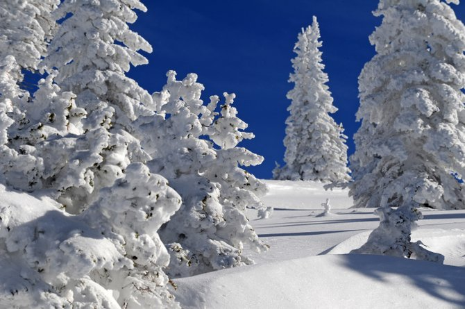 Nearly 2 feet of snow has fallen at Steamboat Ski Area during the past week with more in the forecast.