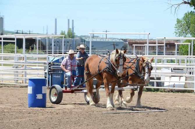 Craig residents Grady Anson, 12, and his father, Mike Anson, compete in the 2013 Grand Olde West Days Draft Horse Show and Feed Team Race at Moffat County Fairgrounds on Sunday. Grady Anson was the only child to compete in this year's races. The father-and-son duo placed sixth in the obstacle course race. The obstacle course is set up to mirror what horses do while working on farms and ranches.
