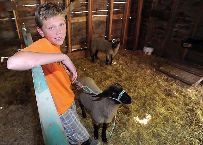 Lucas Morter takes care of his lambs Mudge and Ranger in a barn at the Legacy Ranch just outside Steamboat Springs. Some 4-H members who live in the city and don't have a place for a livestock animal use the facilities at Legacy Ranch.