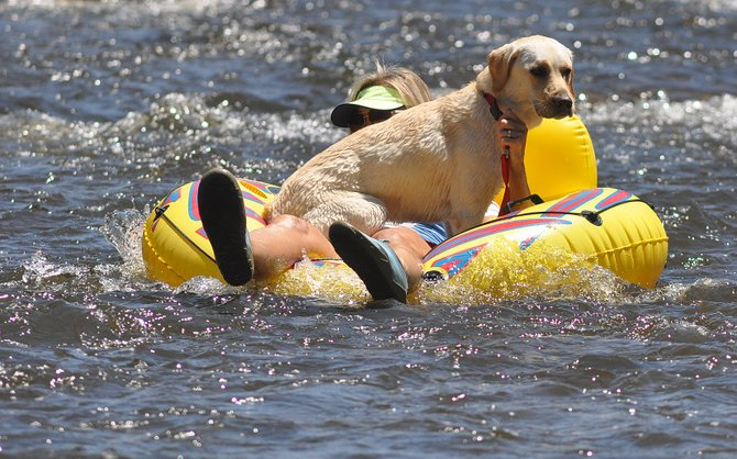 Lou Ann Halligan and her dog, Bella, float down the Yampa River on Thursday afternoon. The river will get a summertime boost when 4,000 acre-feet of water leased by the Colorado Water Trust flows out of Stagecoach Reservoir.