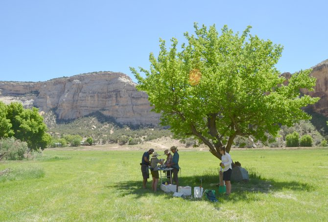 "Members of the Yampa River Awareness raft trip down the rapids of Yampa Canyon were invited to visit the private Mantle Ranch in June and enjoy lunch in the shade of fruit trees. The original planting of the orchards in 1936 is described in Queeda Mantle Walker's 2004 book ""The Mantle Ranch."""