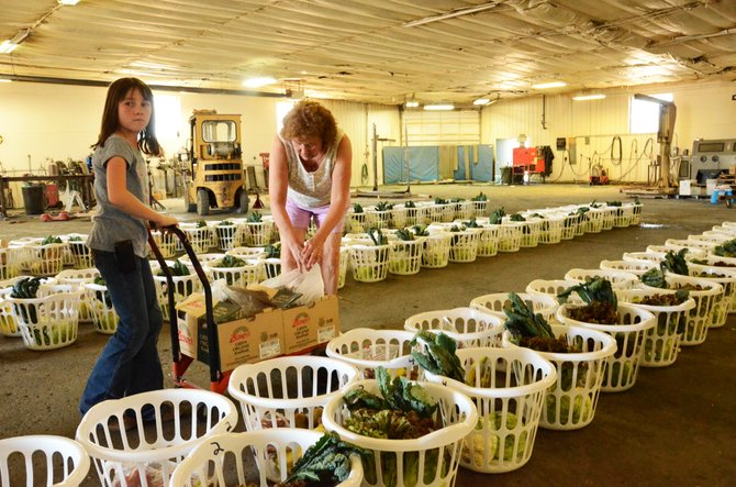 Allison Villard, 11, left, and Theresa Penfold volunteer for Bountiful Baskets at Robinson's Welding in Craig.