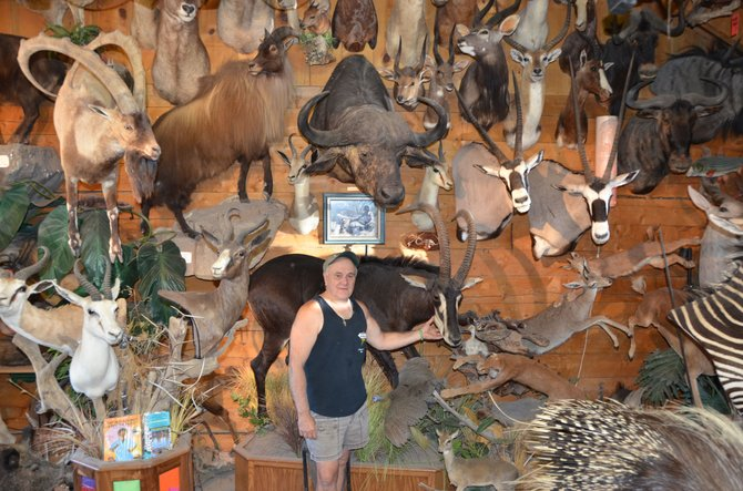 Bill Wille displays the many mounted animals within his workshop, which contains more than 200 preserved creatures of every kind. The Meeker resident owns Antlers Taxidermy and provides African safari tours on a yearly basis.