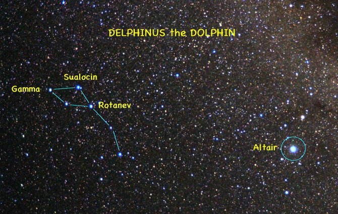 Look for the constellation of Delphinus the Dolphin about halfway up in the eastern sky at 10 p.m. this week. It's not far from the bright star Altair.