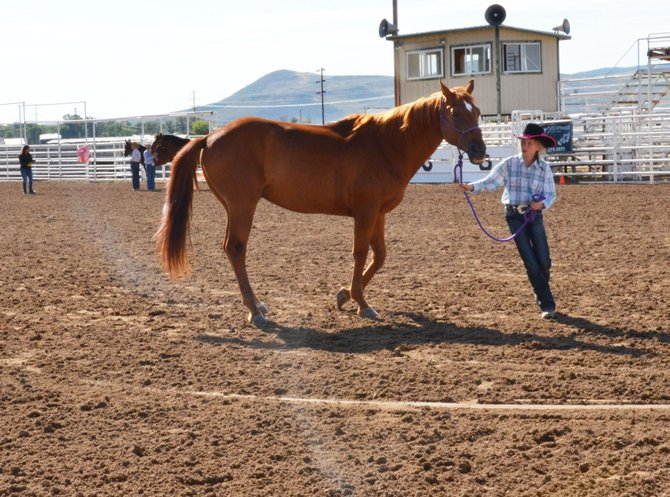 Children from Moffat County were evaluated on their showmanship skills Monday at the Moffat County Fair.