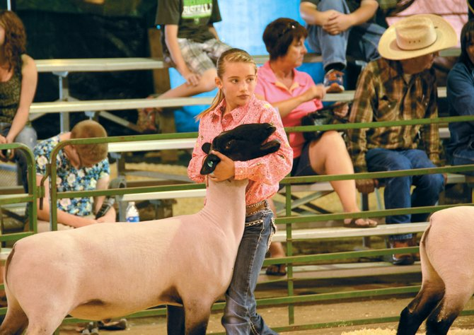 Peyton Voloshin shows her market lamb, Duke, at the Moffat County Fair on Wednesday evening in the livestock barn at the Moffat County Fairgrounds. Peyton won first place for showmanship in the intermediate division.