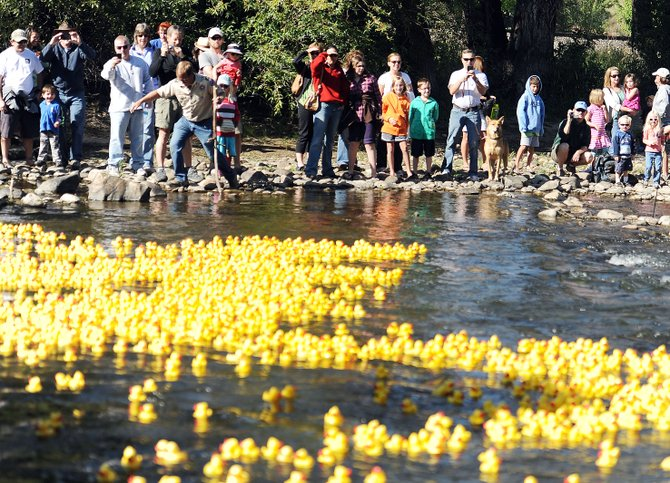 Crowds watch a fleet of yellow rubber ducks swim down the Yampa River during the Rubber Ducky Race in 2012. This year's event is Saturday.