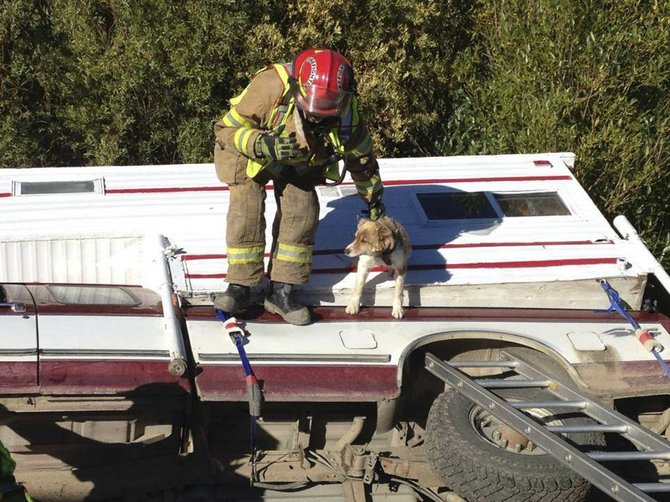Yampa Fire Protection District firefighter Rob Anderson helps rescue a dog Thursday morning.