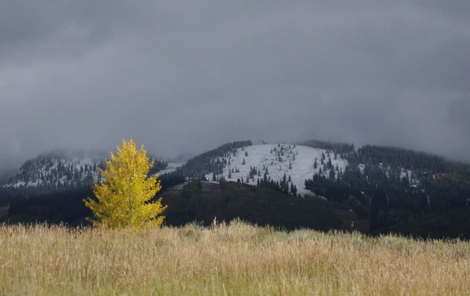 A colorful tree basks in a quick burst of sunlight Monday as the first snow is revealed on Storm Peak. Send your photos of Steamboat's first snowfall to share@steamboattoday.com