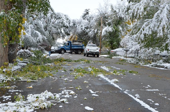Trees throughout the city of Craig were weighed down by the snow Friday morning. Craig Parks and Recreation had dump trucks and trailers clearing the debris.