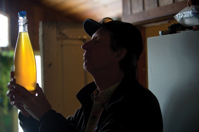 Brewer Ken Proper checks out a bottle of Kolsch that he made in his Steamboat Springs home.