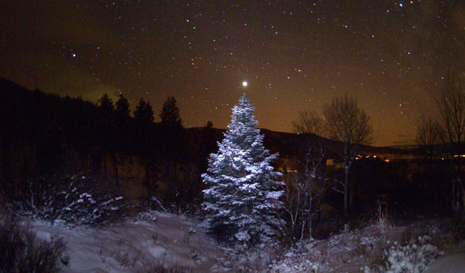 The legendary Star of Bethlehem might have been a rare alignment involving the two brightest planets, Venus and Jupiter. In this image, taken on Dec. 14, 2008, Venus appears to top a snow-covered evergreen tree in Stagecoach.